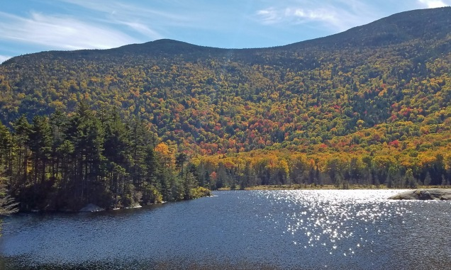 ~New Hampshire Beaver Pond