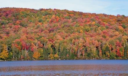 ~Vermont 2 (13)