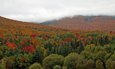 ~Vermont (28)