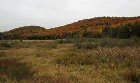 ~Vermont (32)