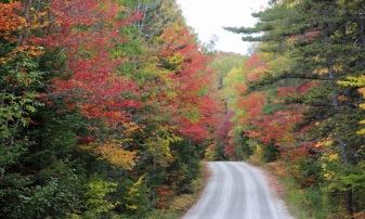 ~Vermont Oct 6 (28)