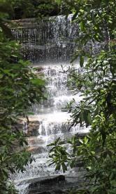 ~Angel Falls (4)