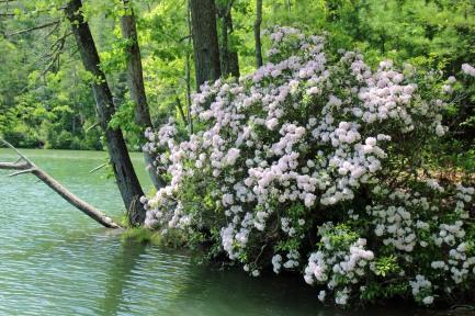 ~Talullah River (67)