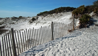 Grayton Beach FL (23) A