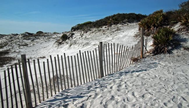 Grayton Beach FL (23) A