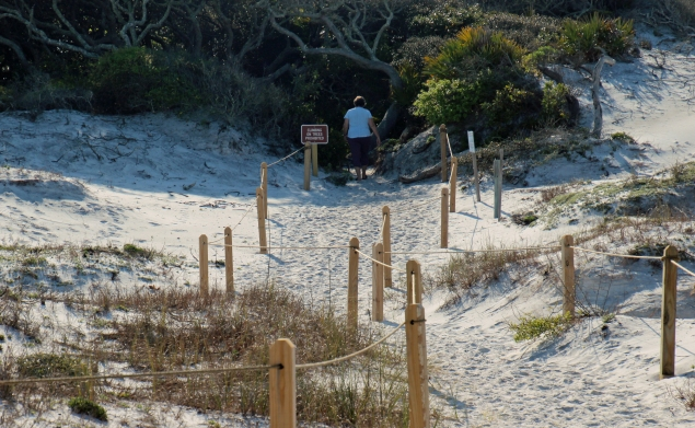 Grayton Beach FL (29) A