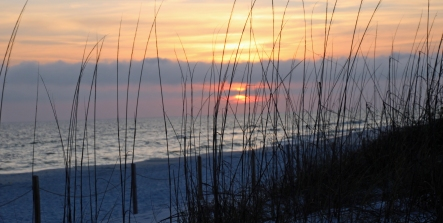Grayton Beach FL (46) A
