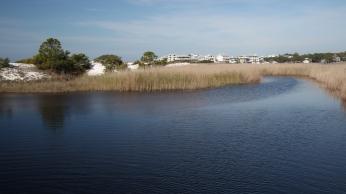 Grayton Beach FL (58) A