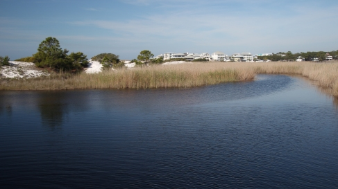 Grayton Beach FL (58) A