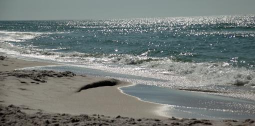 Grayton Beach FL (60) A