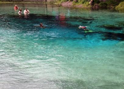 ~Blue Springs SP (11)