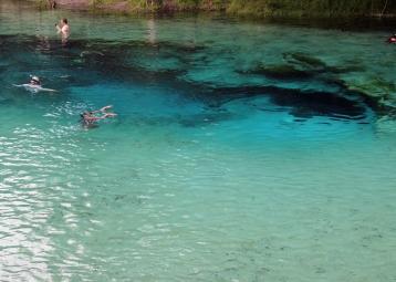 ~Blue Springs SP (5)
