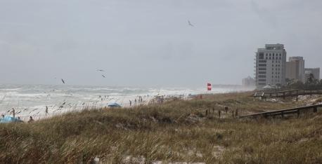 ~Henderson Beach 1 (31)