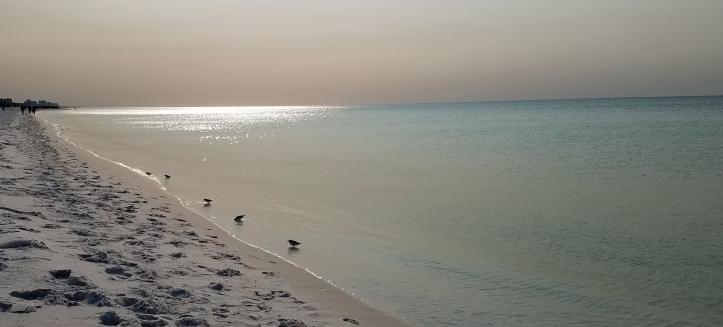 ~Henderson Beach morning